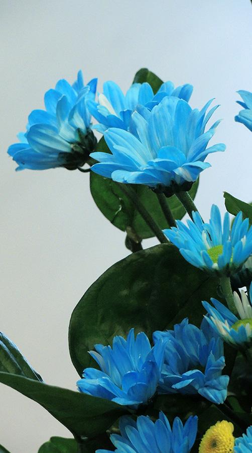 http://www.hpch.org.tw/photo/Photo.ashx?name=2d3ddc81-5c5b-48a0-9e9a-feaaca0a168f.jpg&photos=bc2ffbeb-1e9d-452f-8d6b-eeb00c05575d&category=2a6ebc6e-47d3-481f-afd7-ebf4de96ff16&id=5c1deb79-9452-4aa9-8a00-41a4abc1841b
